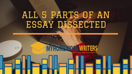 All 5 Parts of an Essay Dissected
